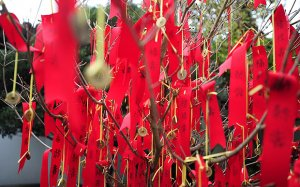 A traditional Chinese Wishing tree