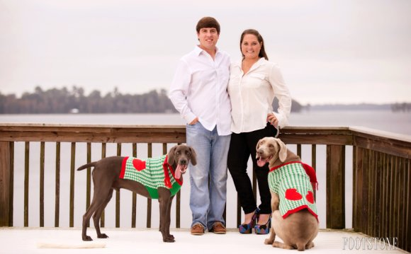 Christmas cards Picture Ideas with Dogs
