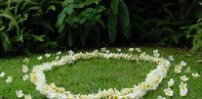 Circle of Flowers Wedding Set with Silk Lifelike Plumeria from Hawaii