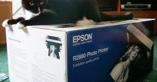 Dominic checking out my Epson printer