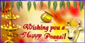 happy pongal whatsapp and facebook images