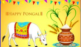 pongal greetings cards