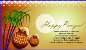 pongal messages images