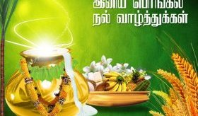 Pongal greeting cards in tamil photos greeting card examples and pongal greeting cards in tamil photos m4hsunfo