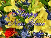 New Year Greeting Cards images