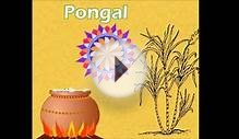 Pongal Card/Greetings/Images/Wishes/photo/ecard